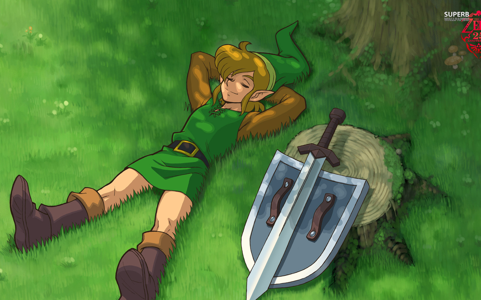 The Legend of Zelda: A Link Between Worlds for Nintendo 3DS ...
